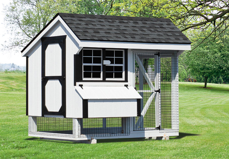 6x8 chicken coop in north dakota with run