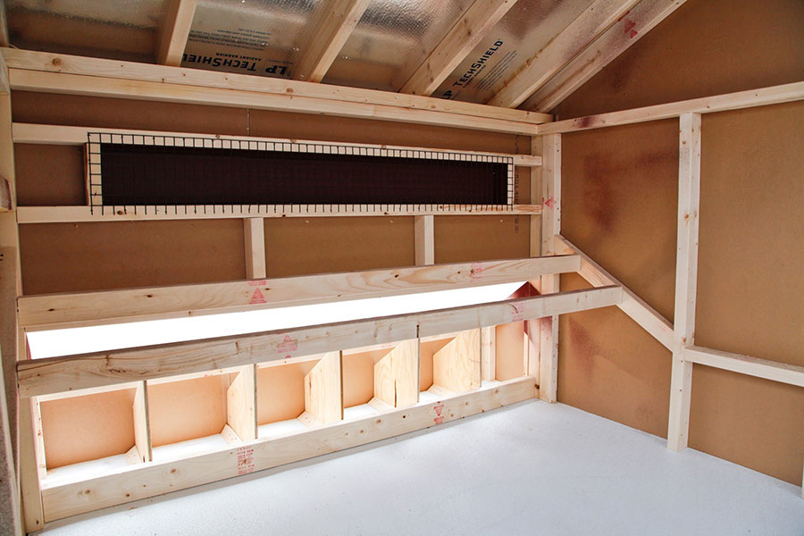 Interior view of chicken coop