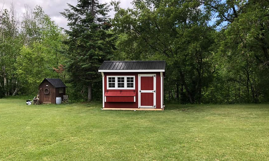 small backyard chicken coops for sale in north dakota